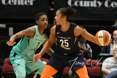 WNBA - New York Liberty 86 vs. Connecticut Sun 88 (66)