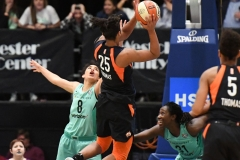 WNBA - New York Liberty 86 vs. Connecticut Sun 88 (69)