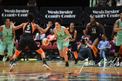 WNBA - New York Liberty 86 vs. Connecticut Sun 88 (70)