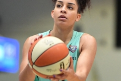 WNBA - New York Liberty 86 vs. Connecticut Sun 88 (71)