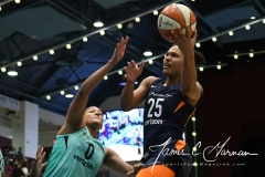 WNBA - New York Liberty 86 vs. Connecticut Sun 88 (8)