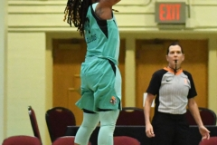 WNBA - New York Liberty 94 vs. Dallas Wings 89 (10)
