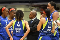 WNBA - New York Liberty 94 vs. Dallas Wings 89 (29)