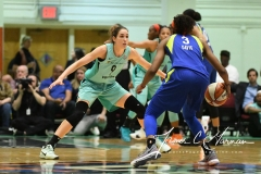 WNBA - New York Liberty 94 vs. Dallas Wings 89 (55)