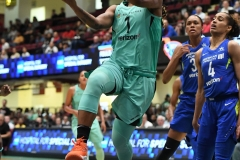 WNBA - New York Liberty 94 vs. Dallas Wings 89 (58)