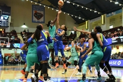WNBA - New York Liberty 94 vs. Dallas Wings 89 (67)