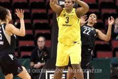 Gallery WNBA: Seattle Storm 101 vs Las Vegas Ace 74