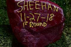 CIAC Football; Class M QFs - #2 Sheehan vs. #7 Wolcott - Photo # 1046