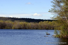Gallery Non-Sports; Mill Pond Way - May Weekend Walk Photo # (23)