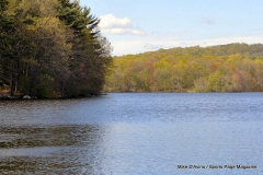 Gallery Non-Sports; Mill Pond Way - May Weekend Walk Photo # (24)