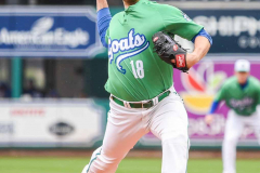 Gallery Baseball- Hartford Yard Goats 2 vs Harrisburg Senators 3 photo-27