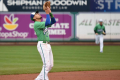 Gallery Baseball- Hartford Yard Goats 2 vs Harrisburg Senators 3 photo-30