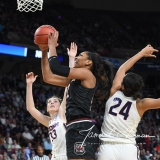 NCAA Women's Basketball Regional Finals - #1 UConn 94 vs. #2 South Carolina 65 (100)