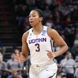 NCAA Women's Basketball Regional Finals - #1 UConn 94 vs. #2 South Carolina 65 (115)
