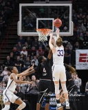 NCAA Women's Basketball Regional Finals - #1 UConn 94 vs. #2 South Carolina 65 (117)