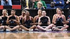 NCAA Women's Basketball Regional Finals - #1 UConn 94 vs. #2 South Carolina 65 (119)