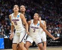 NCAA Women's Basketball Regional Finals - #1 UConn 94 vs. #2 South Carolina 65 (123)
