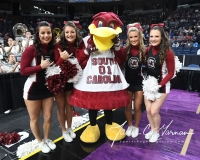 NCAA Women's Basketball Regional Finals - #1 UConn 94 vs. #2 South Carolina 65 (14)