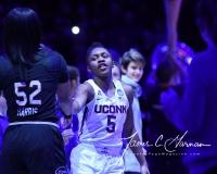 NCAA Women's Basketball Regional Finals - #1 UConn 94 vs. #2 South Carolina 65 (25)