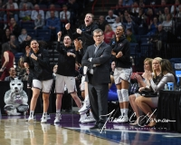 NCAA Women's Basketball Regional Finals - #1 UConn 94 vs. #2 South Carolina 65 (37)
