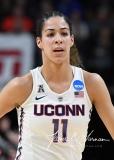 NCAA Women's Basketball Regional Finals - #1 UConn 94 vs. #2 South Carolina 65 (39)