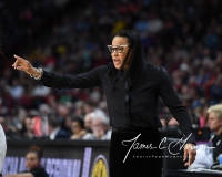 NCAA Women's Basketball Regional Finals - #1 UConn 94 vs. #2 South Carolina 65 (42)