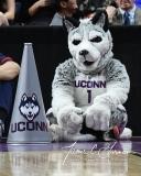 NCAA Women's Basketball Regional Finals - #1 UConn 94 vs. #2 South Carolina 65 (44)