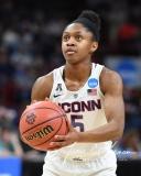 NCAA Women's Basketball Regional Finals - #1 UConn 94 vs. #2 South Carolina 65 (45)