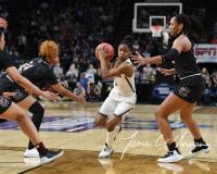 NCAA Women's Basketball Regional Finals - #1 UConn 94 vs. #2 South Carolina 65 (72)
