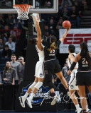 NCAA Women's Basketball Regional Finals - #1 UConn 94 vs. #2 South Carolina 65 (74)