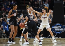 NCAA Women's Basketball Regional Finals - #1 UConn 94 vs. #2 South Carolina 65 (80)