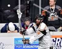 NLL Lacrosse: New England Black Wolves 13 vs. Georgia Swarm 11