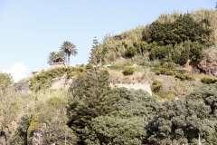 The Azores, Sao Miguel Island, Nordeste Full-Day Safari Tour - Photo # (41)
